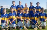 Éire Óg Weekly Notes