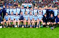 A guide to the 2014 county senior hurling championship