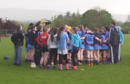 Spirited Éire Óg defeated by Newport in county U14A final
