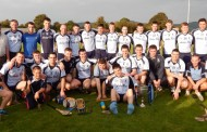 Nenagh Éire Óg crowned north Tipperary junior A champions for the eighth time