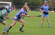 Éire Óg bow out of junior A Camogie championship
