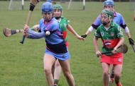 Intermediate Camogie Team Suffer Defeat to Drom & Inch
