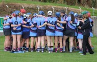 Blues junior A Camogie team book their place in the last four