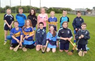 Nenagh Éire Óg Weekly Notes