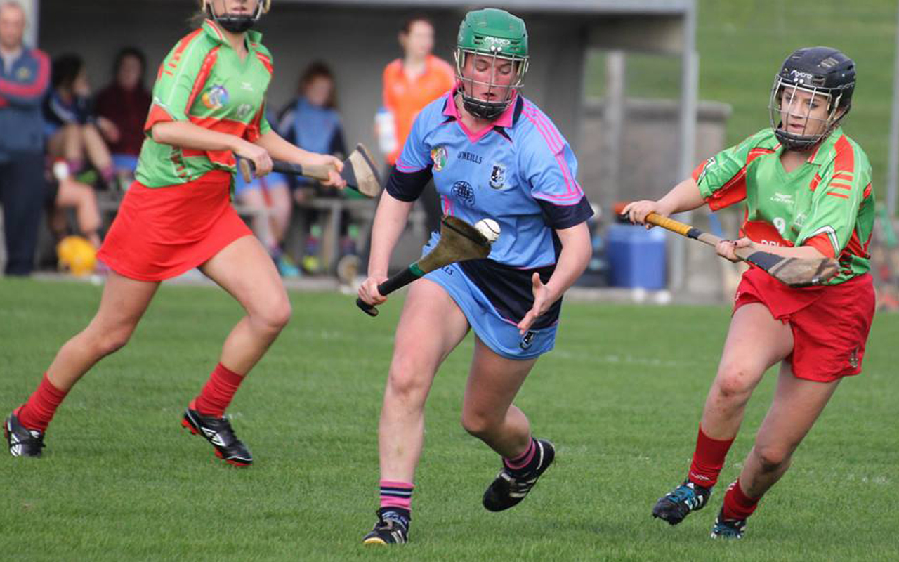 Minor A Camogie team suffer one-point defeat