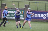 Under-16 Camogie team earn a 12-point win over Silvermines