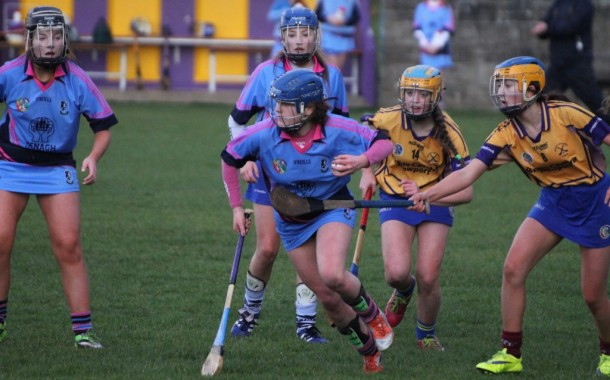 U16 Camogie Team Frustrated in Opening Game of Championship