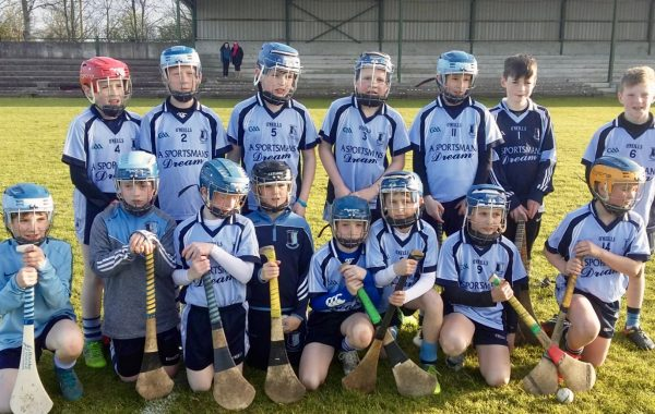 North Tipperary Community Games Champions 2018